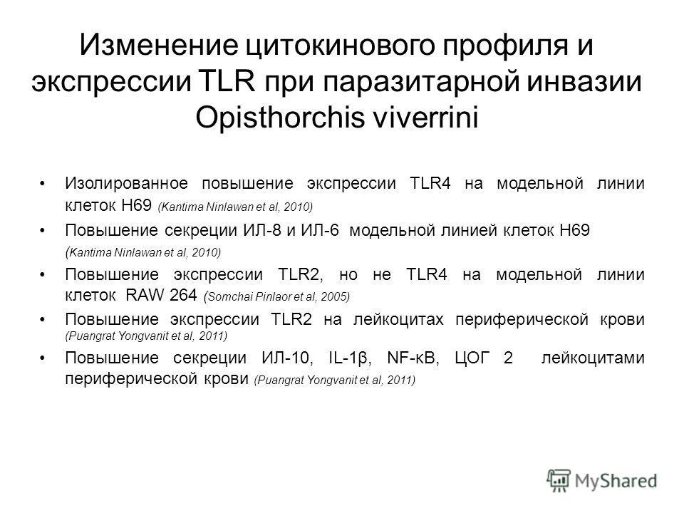 Изменение цитокинового профиля и экспрессии TLR при паразитарной инвазии Opisthorchis viverrini Изолированное повышение экспрессии TLR4 на модельной линии клеток Н69 (Kantima Ninlawan et al, 2010) Повышение секреции ИЛ-8 и ИЛ-6 модельной линией клето