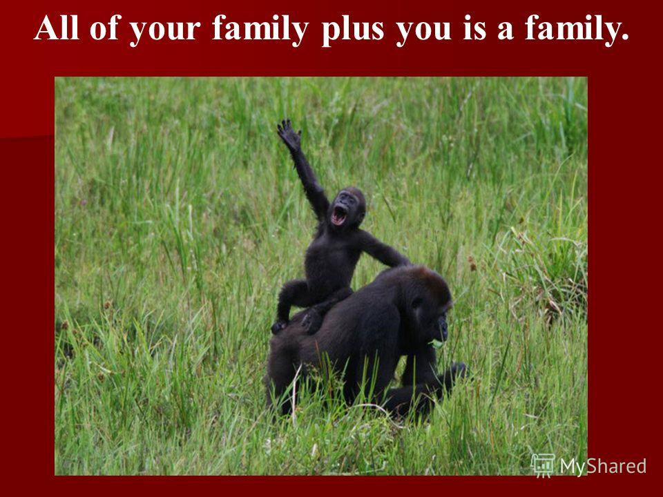 All of your family plus you is a family.