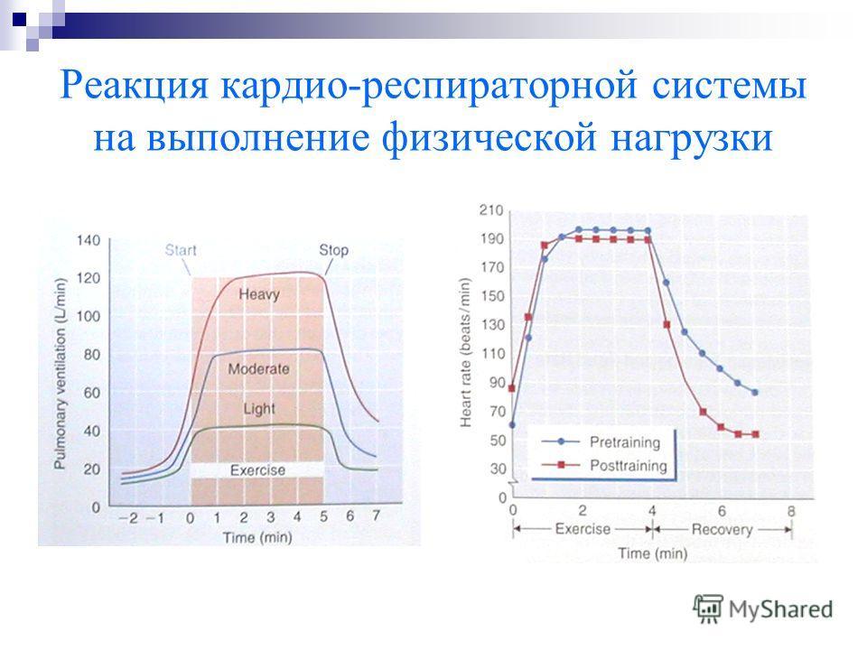 Реакция кардио-респираторной системы на выполнение физической нагрузки