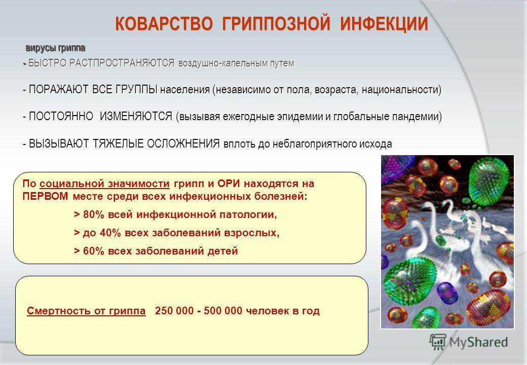 вирусы гриппа вирусы гриппа - БЫСТРО РАСТПРОСТРАНЯЮТСЯ воздушно-капельным путем - ПОРАЖАЮТ ВСЕ ГРУППЫ населения (независимо от пола, возраста, национальности) - ПОСТОЯННО ИЗМЕНЯЮТСЯ (вызывая ежегодные эпидемии и глобальные пандемии) - ВЫЗЫВАЮТ ТЯЖЕЛЫ