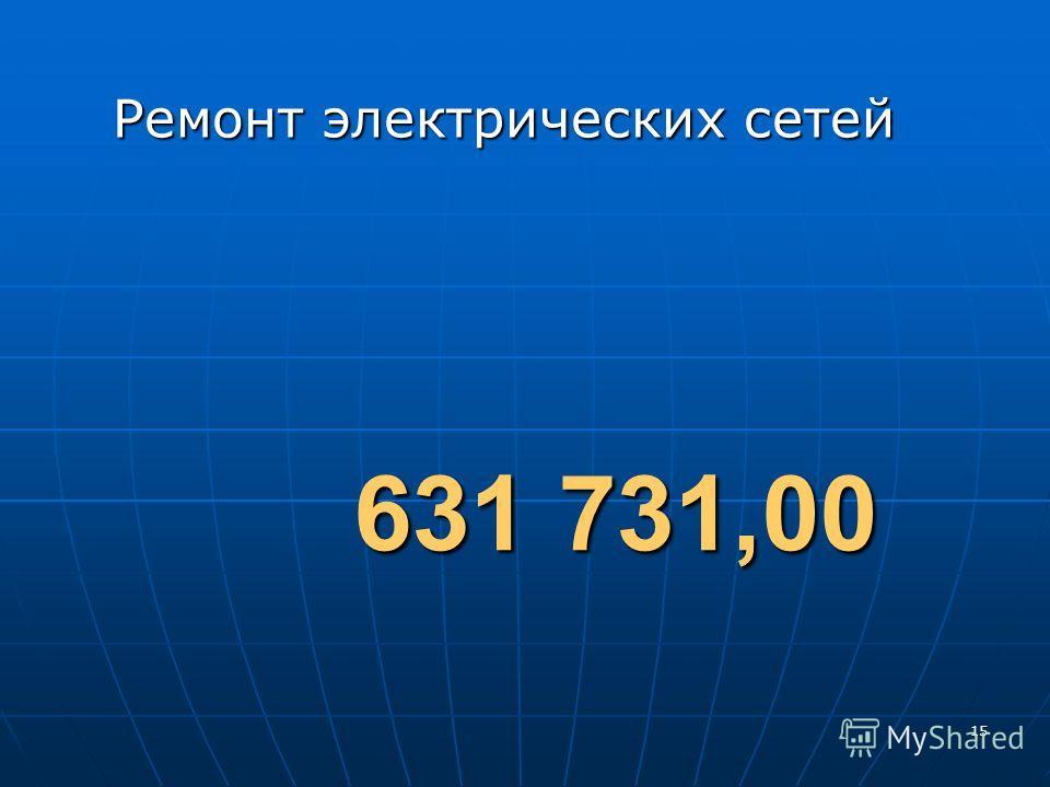 15 Ремонт электрических сетей 631 731,00