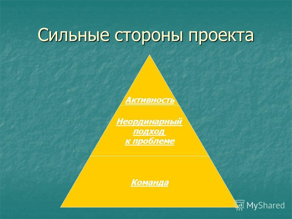 Сильные стороны проекта Активность Неординарный подход к проблеме Команда