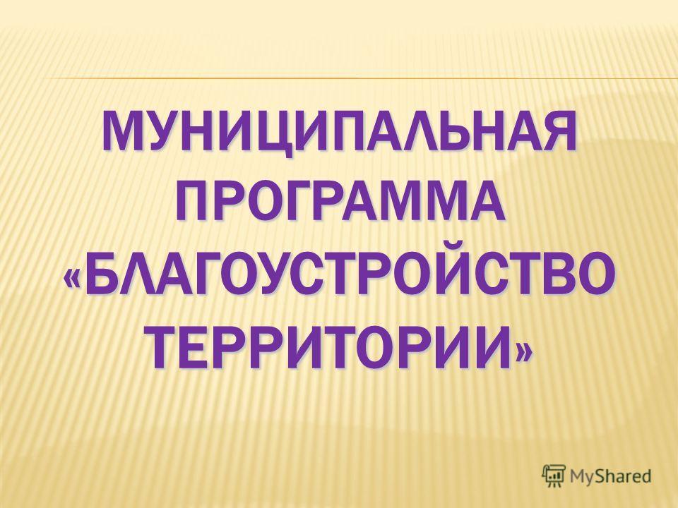 МУНИЦИПАЛЬНАЯ ПРОГРАММА «БЛАГОУСТРОЙСТВО ТЕРРИТОРИИ»