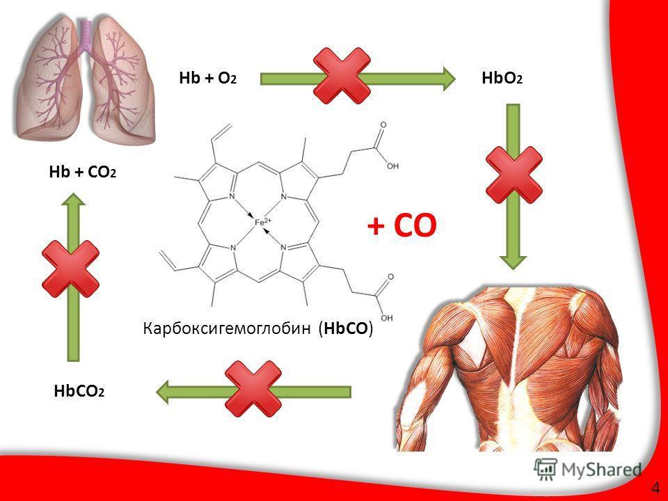 Карбоксигемоглобин (HbCO) 4 HbO 2 HbCO 2 Hb + O 2 Hb + CO 2 + CO ФАЛТ МФТИ
