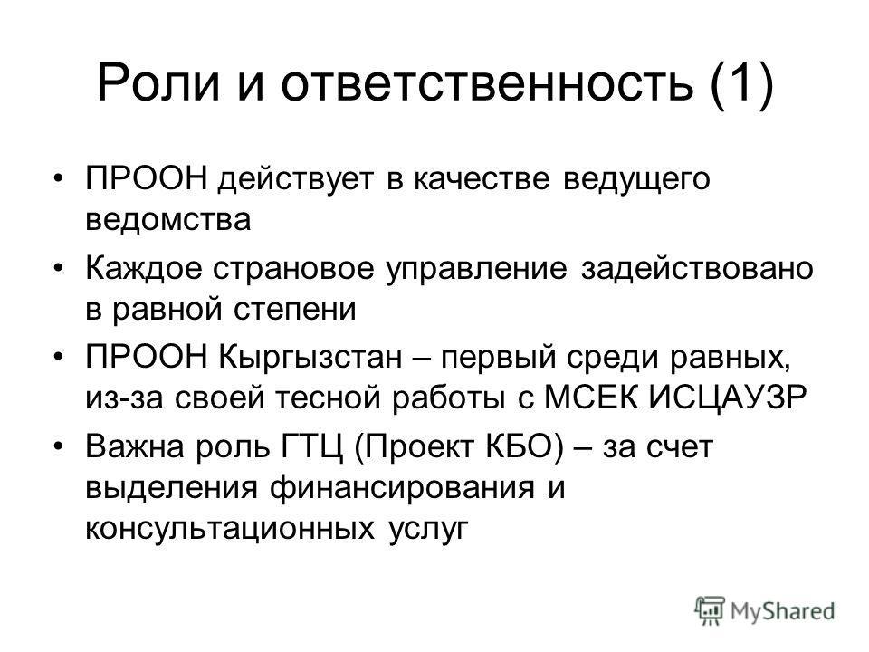 Роли и ответственность (1) ПРООН действует в качестве ведущего ведомства Каждое страновое управление задействовано в равной степени ПРООН Кыргызстан – первый среди равных, из-за своей тесной работы с МСЕК ИСЦАУЗР Важна роль ГТЦ (Проект КБО) – за счет