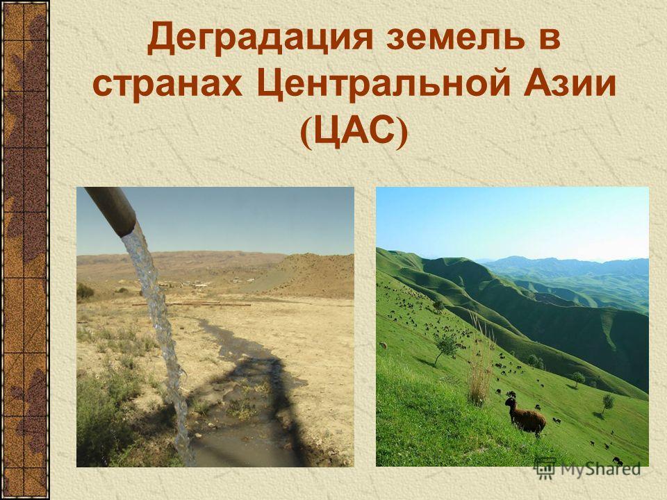 Деградация земель в странах Центральной Азии ( ЦАС )