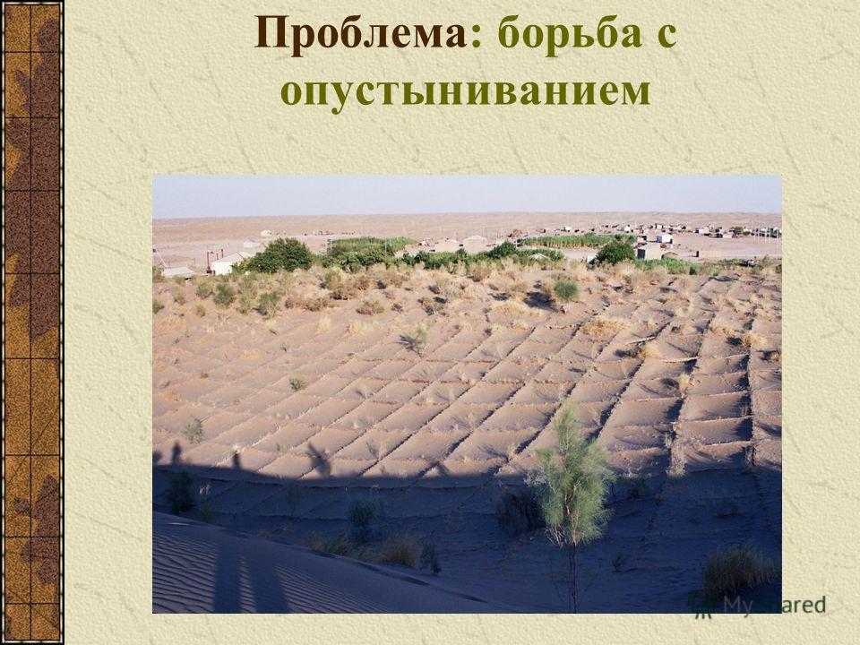 Проблема: борьба с опустыниванием