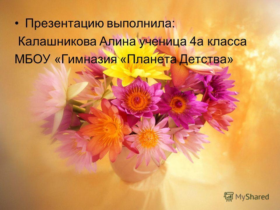Презентацию выполнила: Калашникова Алина ученица 4а класса МБОУ «Гимназия «Планета Детства»