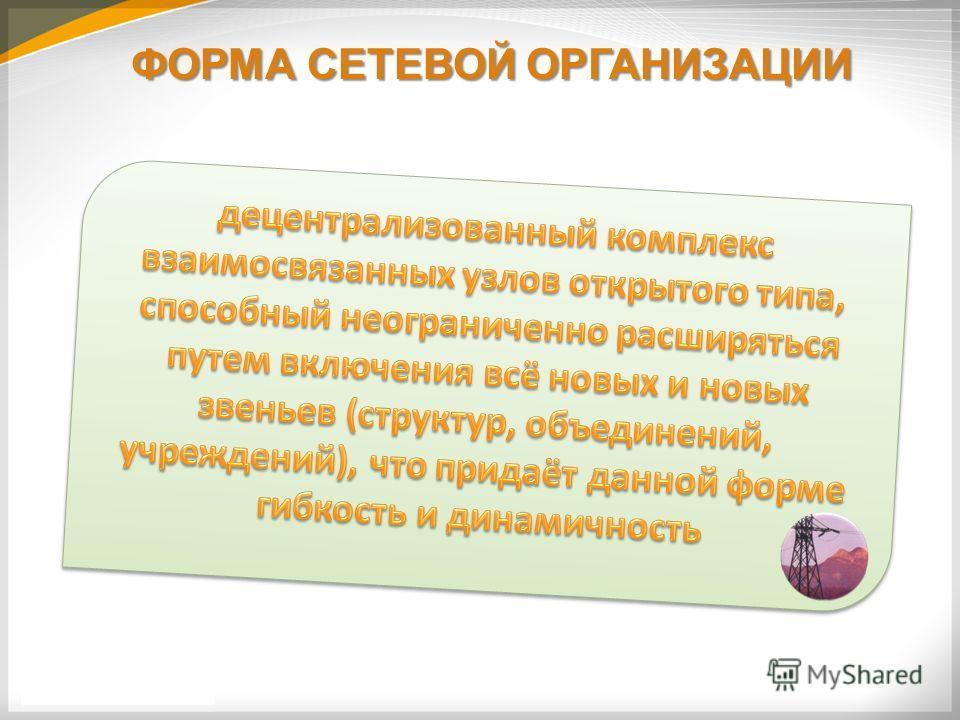 ФОРМА СЕТЕВОЙ ОРГАНИЗАЦИИ
