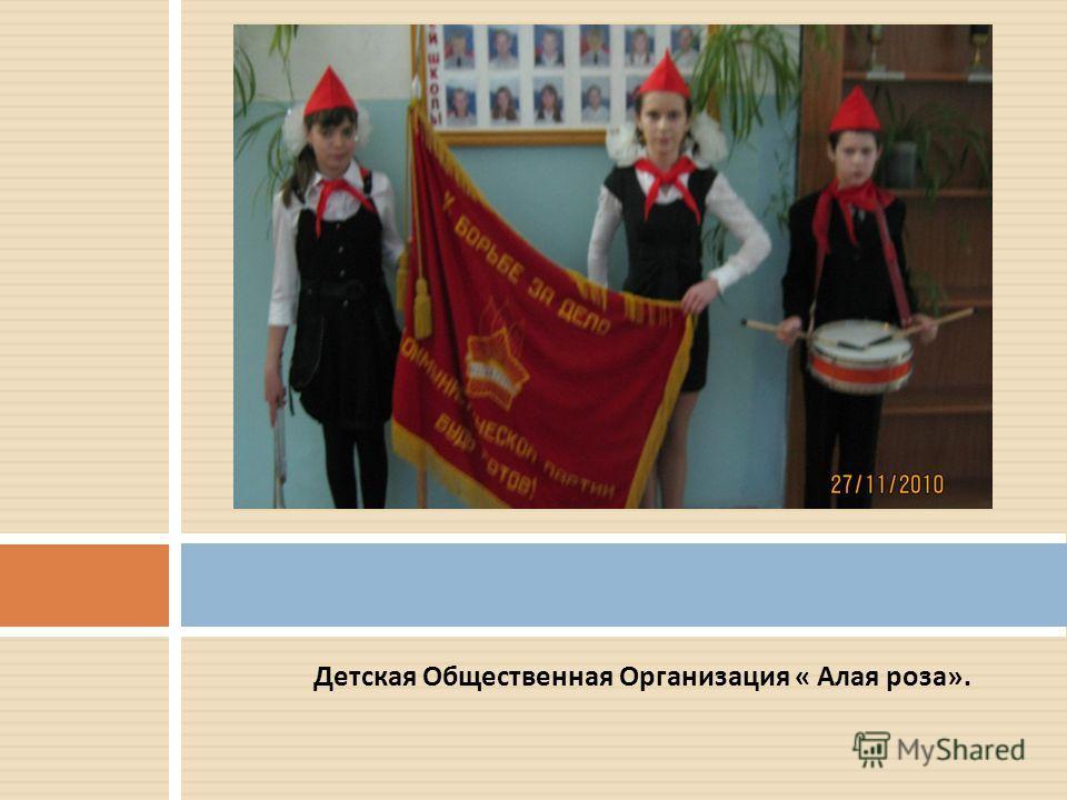 Детская Общественная Организация « Алая роза ».