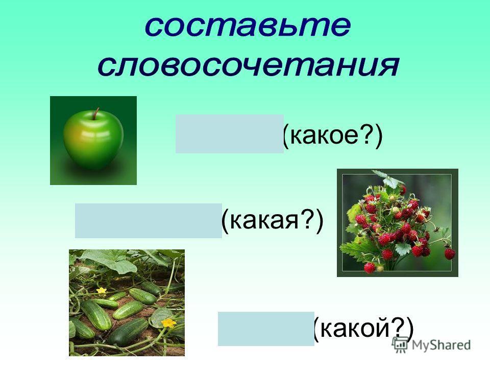 Яблоко(какое?) Земляника(какая?) Огурец(какой?)