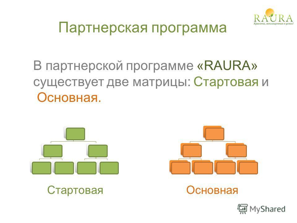 В партнерской программе «RAURA» существует две матрицы: Стартовая и Основная. Партнерская программа ОсновнаяСтартовая