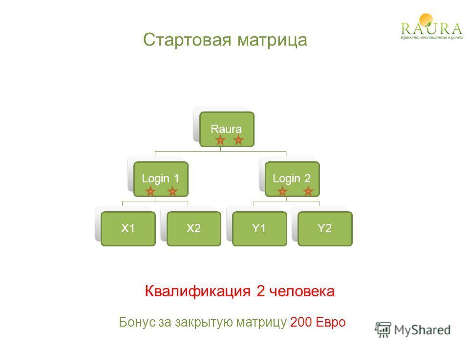 Стартовая матрица RauraLogin 1X1X2Login 2Y1Y2 Бонус за закрытую матрицу 200 Евро Квалификация 2 человека