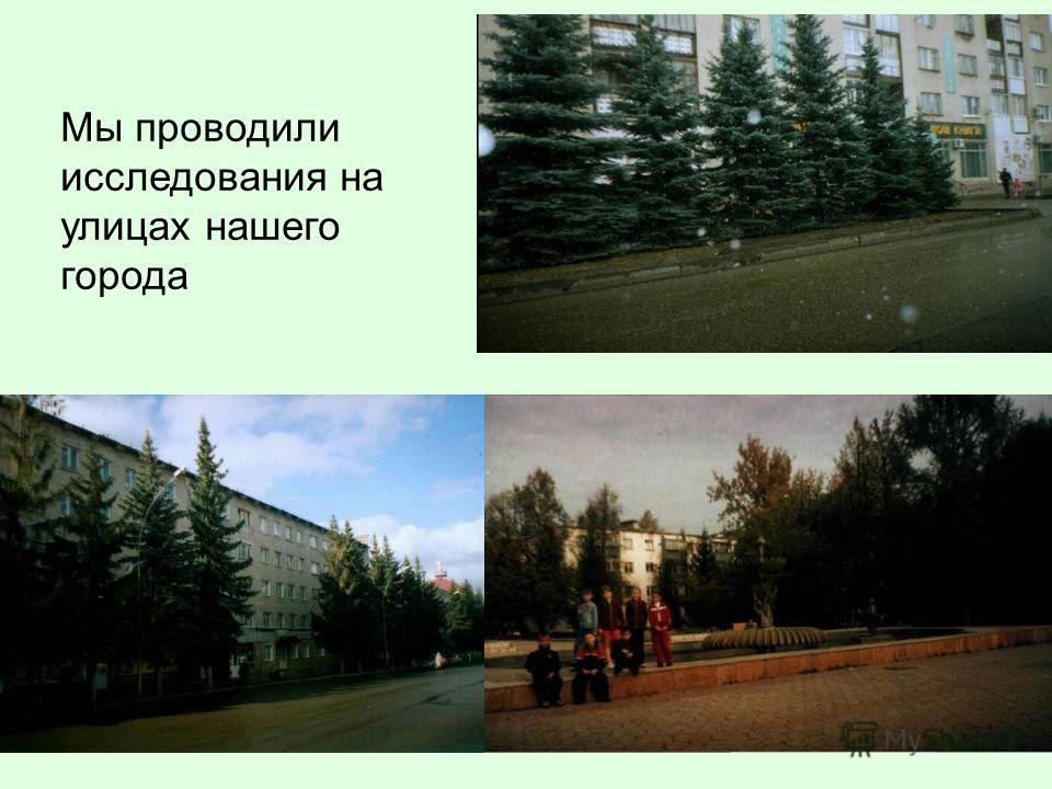 Мы проводили исследования на улицах нашего города