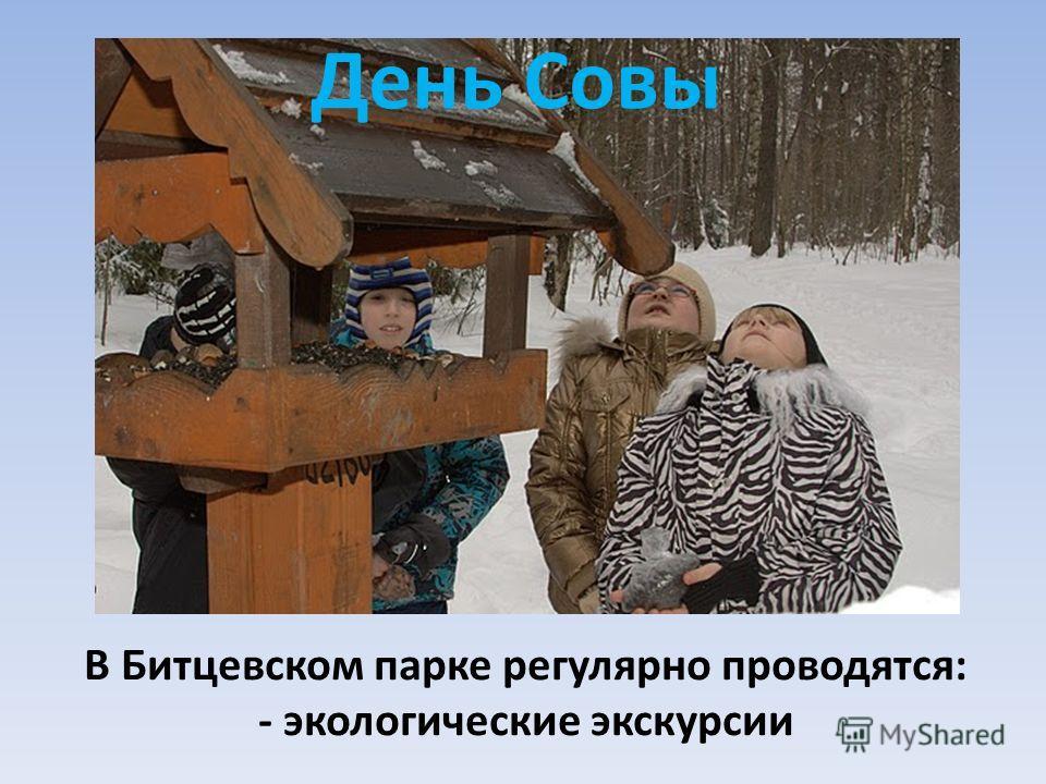 День Совы В Битцевском парке регулярно проводятся: - экологические экскурсии