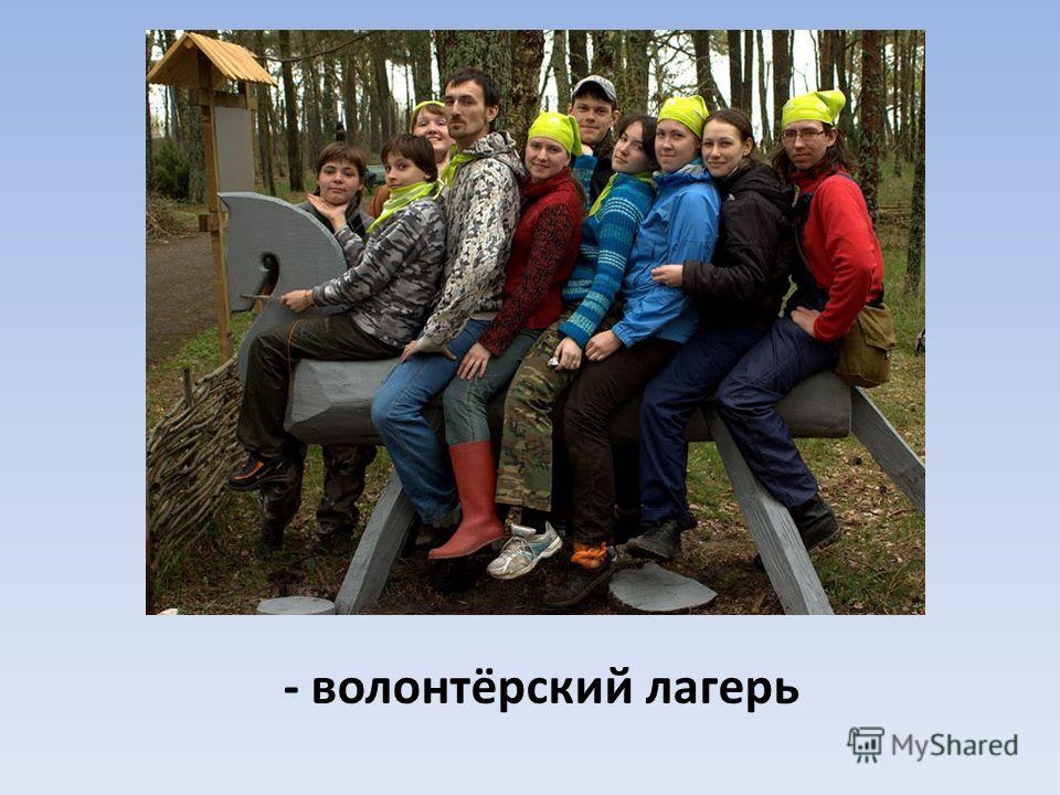 - волонтёрский лагерь