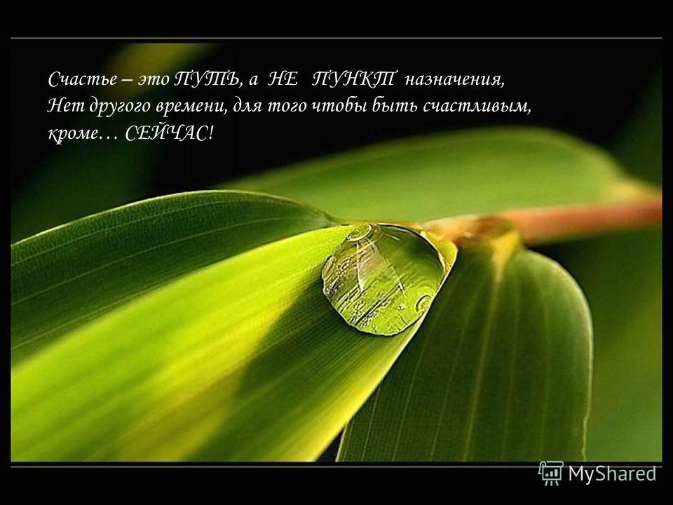 Счастье – это ПУТЬ, а НЕ ПУНКТ назначения, Нет другого времени, для того чтобы быть счастливым, кроме… СЕЙЧАС!