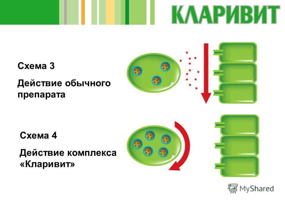 Схема 4 Действие комплекса «Кларивит» Схема 3 Действие обычного препарата