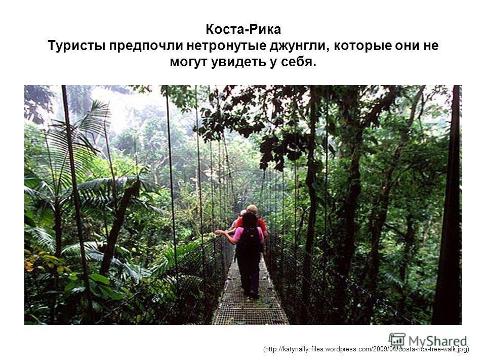 Коста-Рика Туристы предпочли нетронутые джунгли, которые они не могут увидеть у себя. (http://katynally.files.wordpress.com/2009/04/costa-rica-tree-walk.jpg)