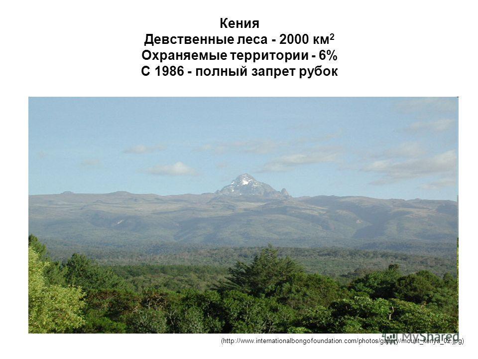 Кения Девственные леса - 2000 км 2 Охраняемые территории - 6% С 1986 - полный запрет рубок (http://www.internationalbongofoundation.com/photos/gallery/mount_kenya_02.jpg)