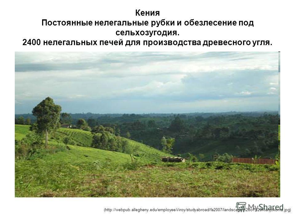 Кения Постоянные нелегальные рубки и обезлесение под сельхозугодия. 2400 нелегальных печей для производства древесного угля. (http://webpub.allegheny.edu/employee/i/iroy/studyabroad/fa2007/landscape%20of%20Kianjokoma.jpg)
