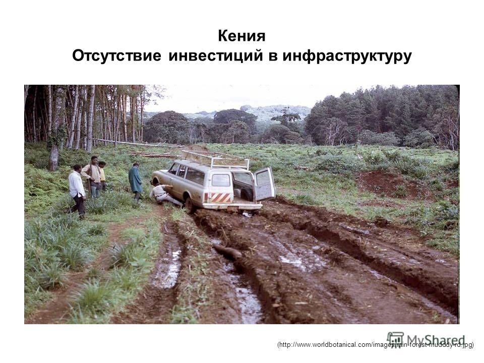 Кения Отсутствие инвестиций в инфраструктуру (http://www.worldbotanical.com/images/rain-forest-mudddy-rd.jpg)