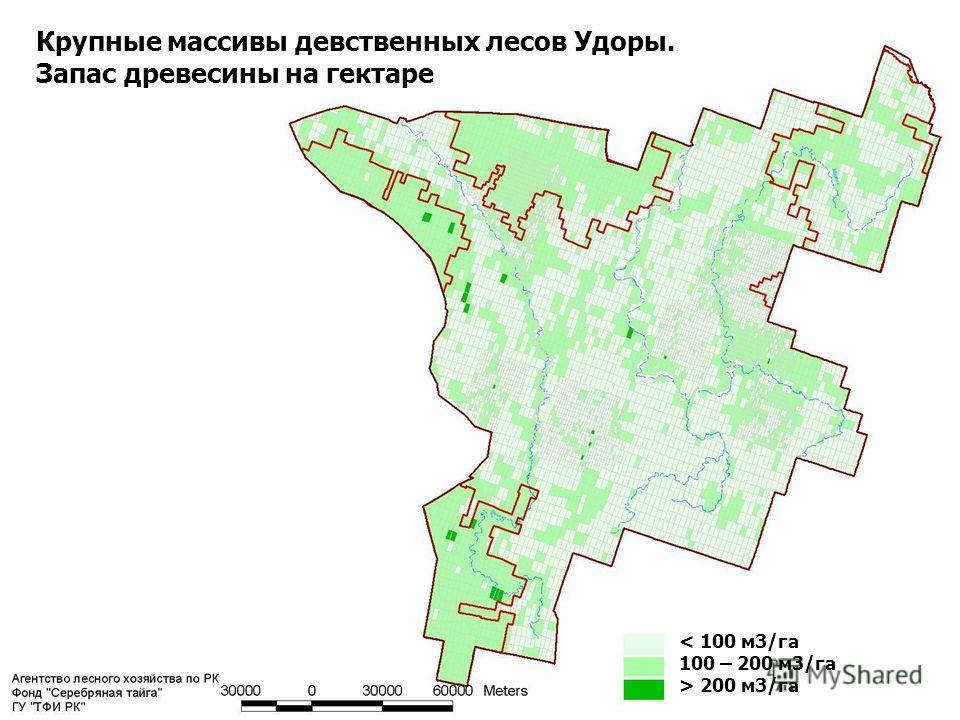 15 Крупные массивы девственных лесов Удоры. Запас древесины на гектаре < 100 м3/га 100 – 200 м3/га > 200 м3/га