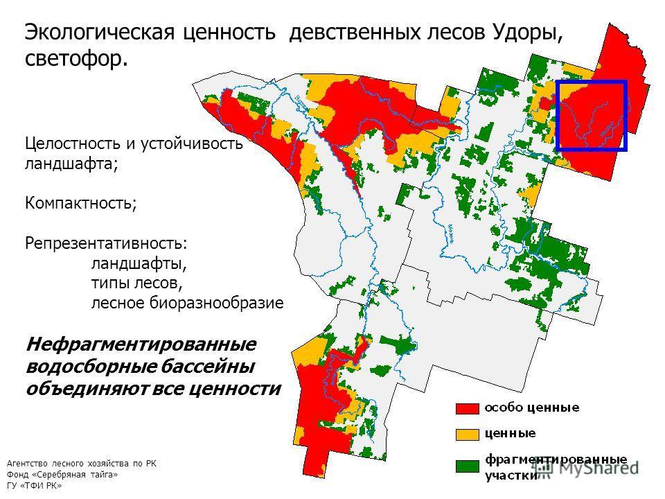 9 Целостность и устойчивость ландшафта; Компактность; Репрезентативность: ландшафты, типы лесов, лесное биоразнообразие Нефрагментированные водосборные бассейны объединяют все ценности Экологическая ценность девственных лесов Удоры, светофор. Агентст