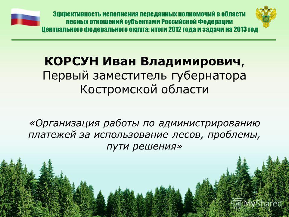 КОРСУН Иван Владимирович, Первый заместитель губернатора Костромской области «Организация работы по администрированию платежей за использование лесов, проблемы, пути решения»