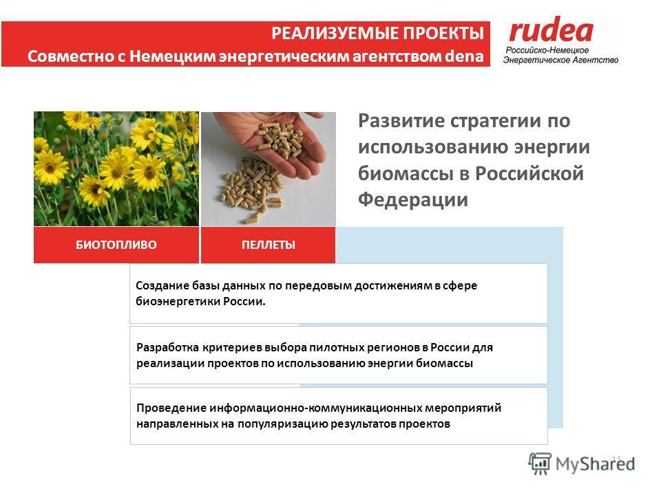 Проведение информационно-коммуникационных мероприятий направленных на популяризацию результатов проектов Разработка критериев выбора пилотных регионов в России для реализации проектов по использованию энергии биомассы Создание базы данных по передовы