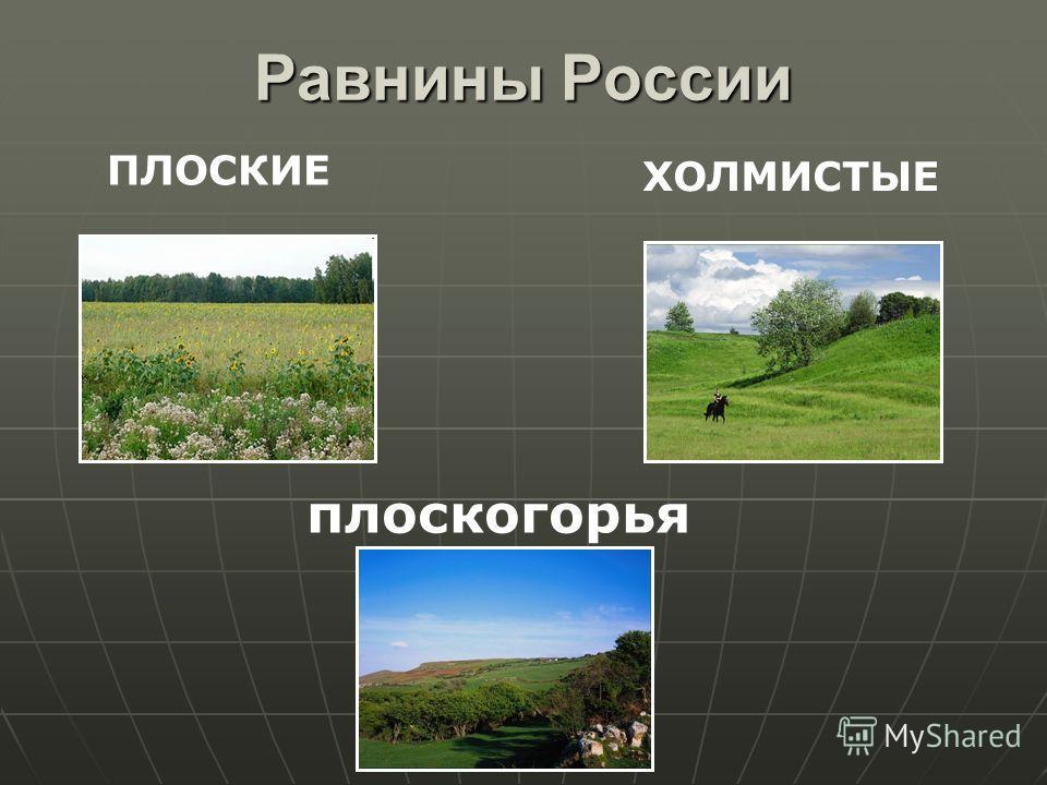 Равнины России ПЛОСКИЕ ХОЛМИСТЫЕ плоскогорья