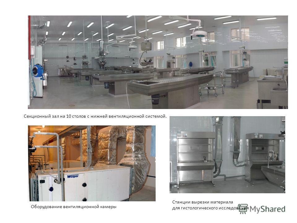Секционный зал на 10 столов с нижней вентиляционной системой. Оборудование вентиляционной камеры Станции вырезки материала для гистологического исследования