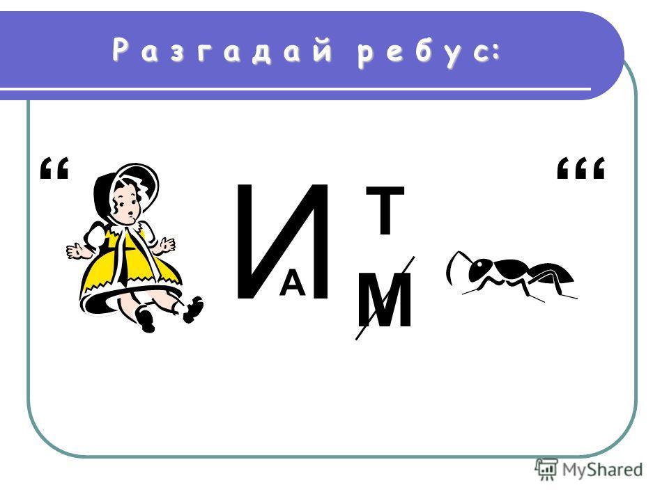 Р а з г а д а й р е б у с: И А М Т