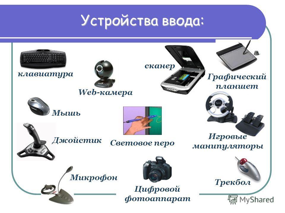 клавиатура Web-камера Джойстик Микрофон Цифровой фотоаппарат Трекбол Мышь Игровые манипуляторы сканер Графический планшет Световое перо