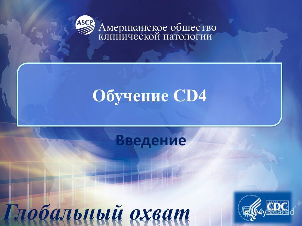 Обучение CD4 Введение