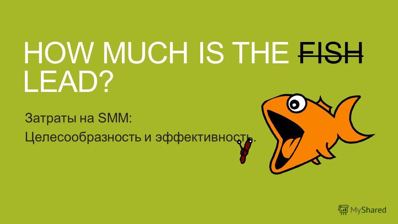 HOW MUCH IS THE FISH LEAD? Затраты на SMM: Целесообразность и эффективность.