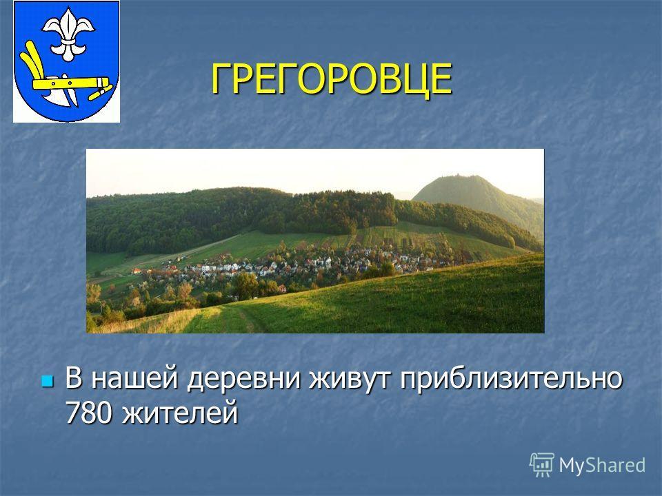ГРЕГОРОВЦЕ В нашей деревни живут приблизительно 780 жителей В нашей деревни живут приблизительно 780 жителей