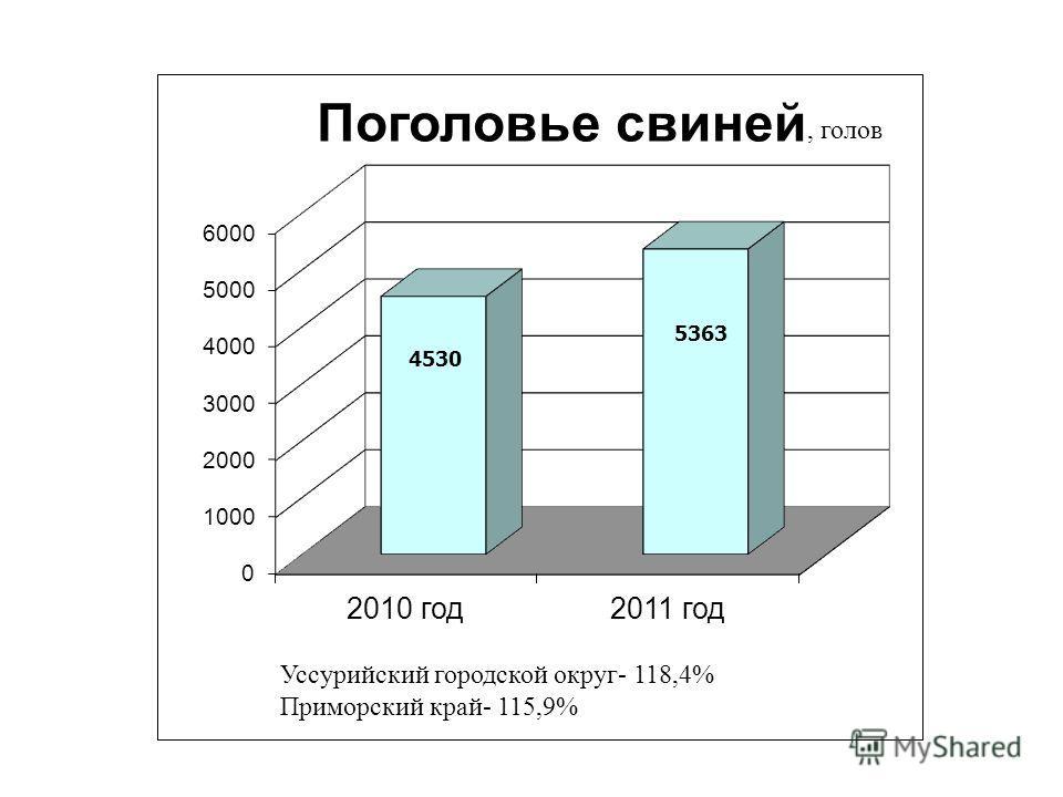 Уссурийский городской округ- 118,4% Приморский край- 115,9%, голов