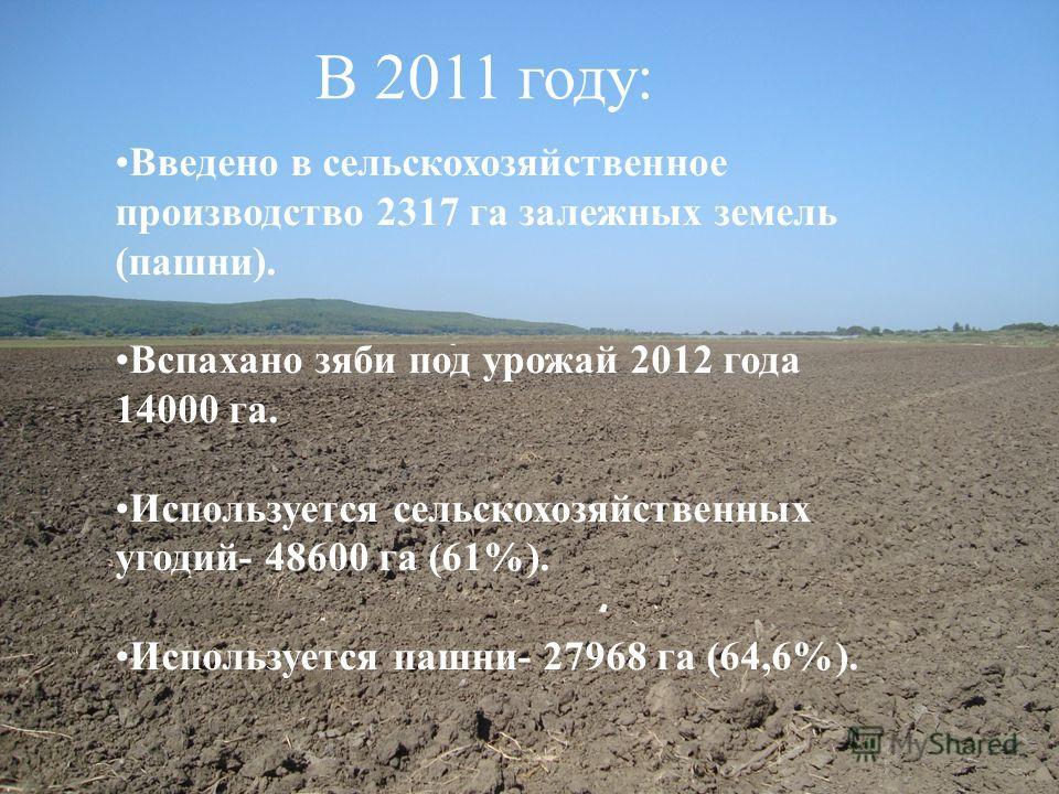 В 2011 году: Введено в сельскохозяйственное производство 2317 га залежных земель (пашни). Вспахано зяби под урожай 2012 года 14000 га. Используется сельскохозяйственных угодий- 48600 га (61%). Используется пашни- 27968 га (64,6%).