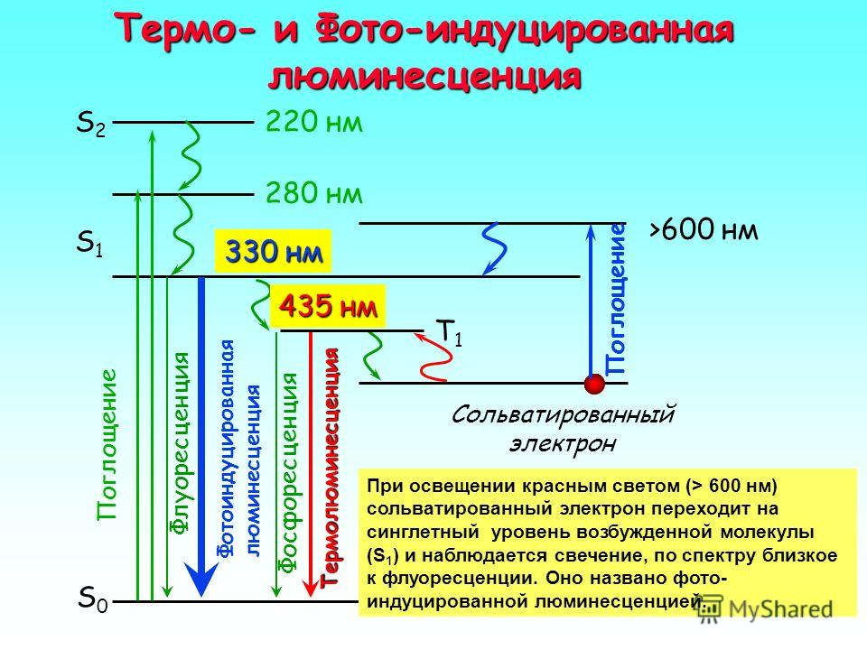 Фотоиндуцированная люминесценция УФ-облученного триптофана 435 нм Phosphorescence Ground state S o Excited state S1S1 S0S0 S2S2 T1T1 3 eses Thermoluminescence 5 >600 нм 330 нм Photo- induced luminescence Fluorescence 2 6