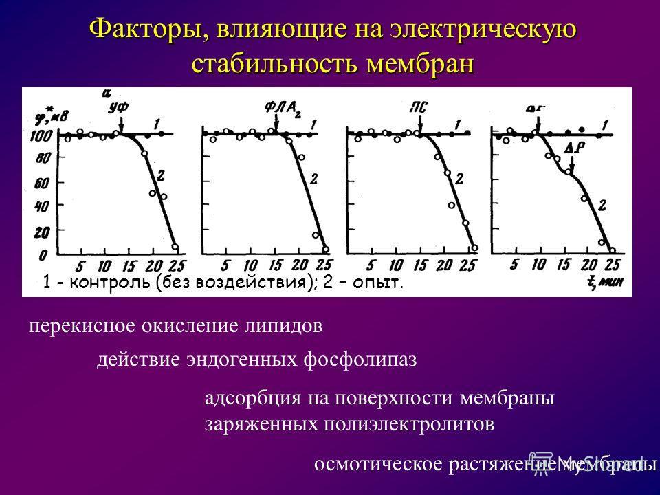 перекисное окисление липидов действие эндогенных фосфолипаз адсорбция на поверхности мембраны заряженных полиэлектролитов осмотическое растяжение мембраны Факторы, влияющие на электрическую стабильность мембран 1 - контроль (без воздействия); 2 – опы