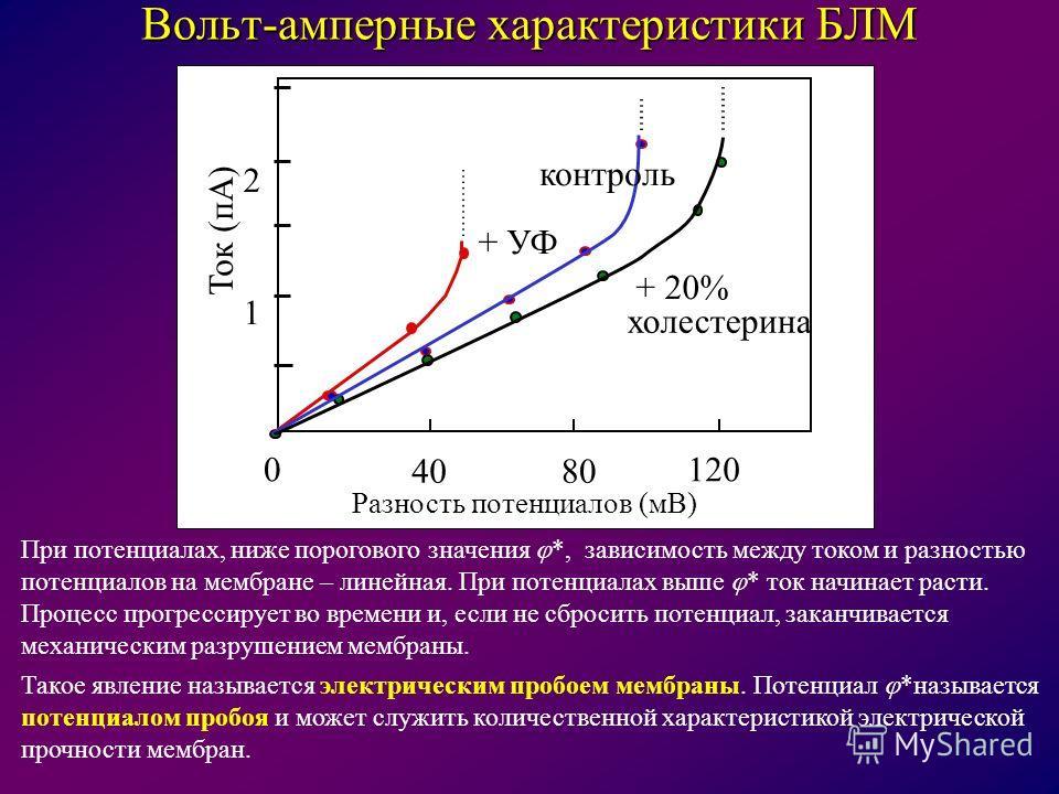 Вольт-амперные характеристики БЛМ 4080 1200 1 2 Ток (пА) Разность потенциалов (мВ) + 20% холестерина + УФ контроль При потенциалах, ниже порогового значения *, зависимость между током и разностью потенциалов на мембране – линейная. При потенциалах вы