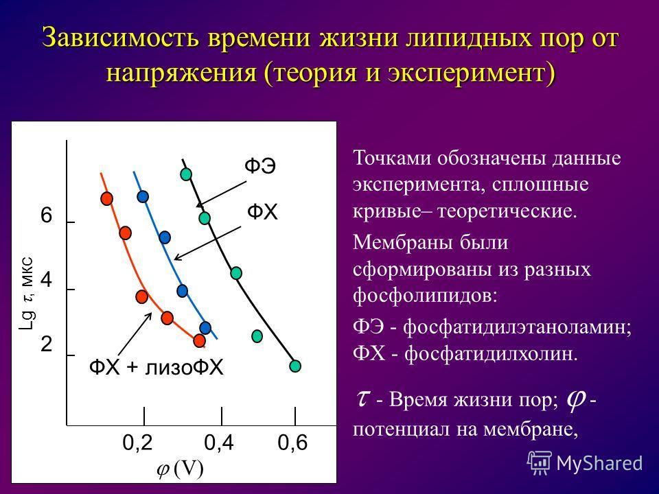 Зависимость времени жизни липидных пор от напряжения (теория и эксперимент) (V) 6 4 2 0,20,40,6 ФХ + лизоФХ ФЭ ФХ Lg, мкс Точками обозначены данные эксперимента, сплошные кривые– теоретические. Мембраны были сформированы из разных фосфолипидов: ФЭ -
