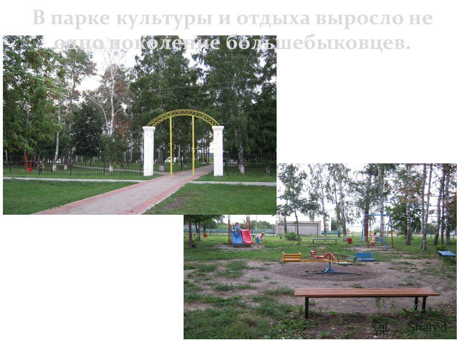 В парке культуры и отдыха выросло не одно поколение большебыковцев.