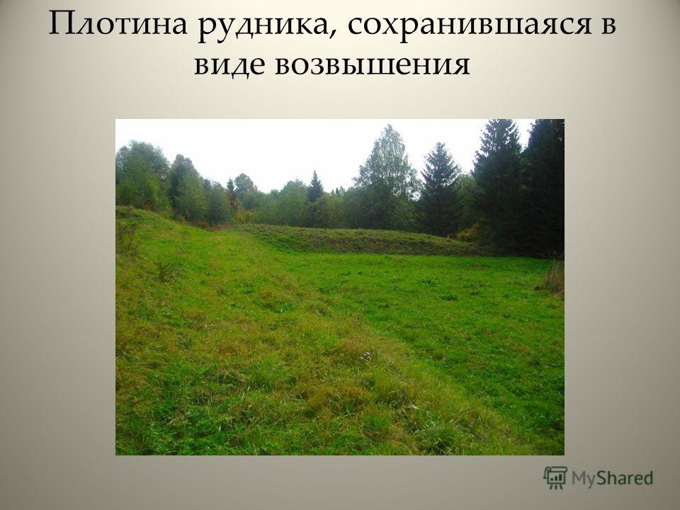 Плотина рудника, сохранившаяся в виде возвышения
