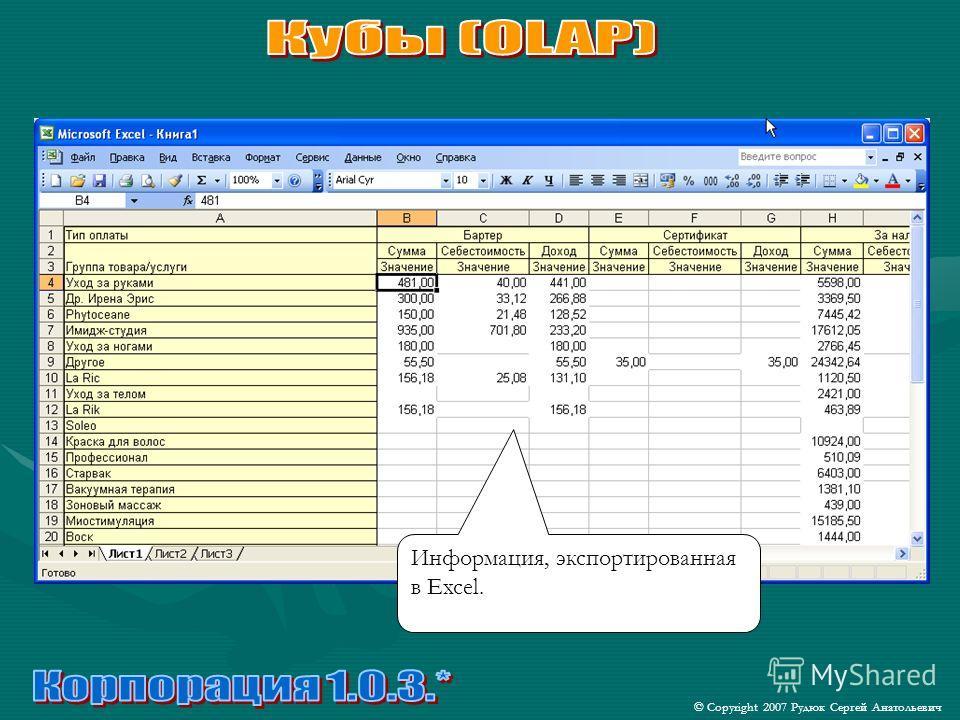© Copyright 2007 Рудюк Сергей Анатольевич Информация, экспортированная в Excel.
