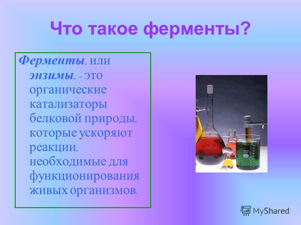 Что такое ферменты? Ферменты, или энзимы, - это органические катализаторы белковой природы, которые ускоряют реакции, необходимые для функционирования живых организмов.