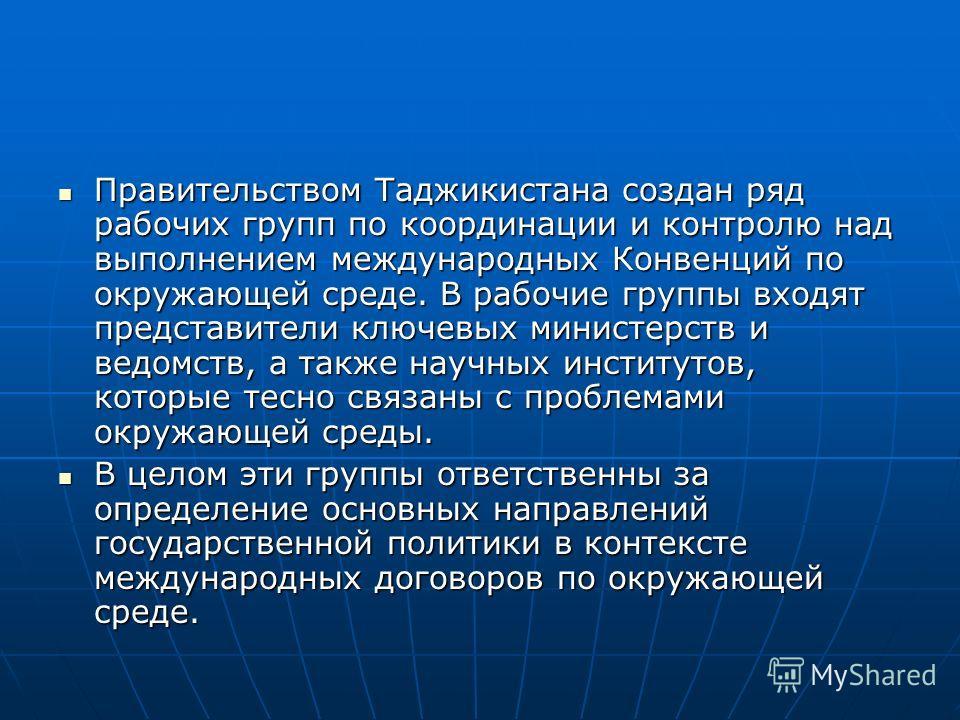 Правительством Таджикистана создан ряд рабочих групп по координации и контролю над выполнением международных Конвенций по окружающей среде. В рабочие группы входят представители ключевых министерств и ведомств, а также научных институтов, которые тес