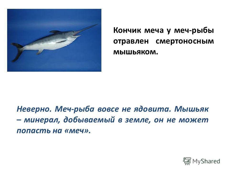 Кончик меча у меч-рыбы отравлен смертоносным мышьяком. Неверно. Меч-рыба вовсе не ядовита. Мышьяк – минерал, добываемый в земле, он не может попасть на «меч».