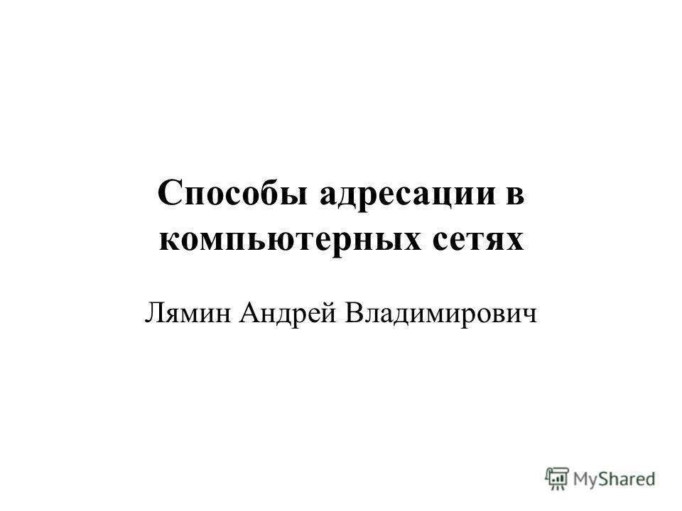 Способы адресации в компьютерных сетях Лямин Андрей Владимирович